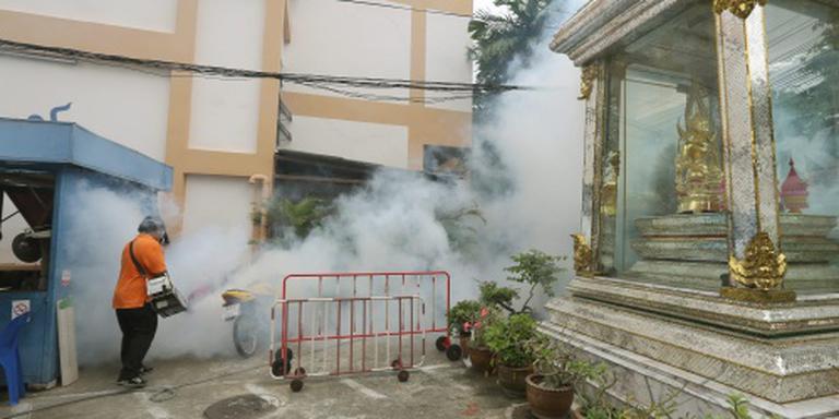 Microcefalie door zikavirus in Thailand