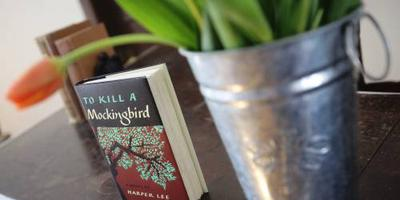 School verbiedt To Kill a Mockingbird