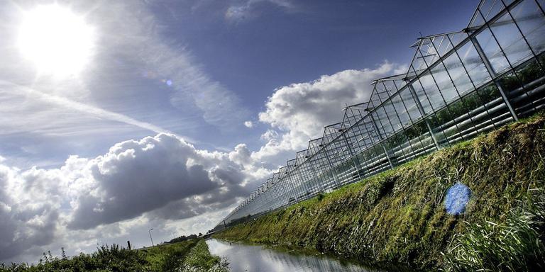 Extra subsidie innovatie tuinbouwsector Emmen