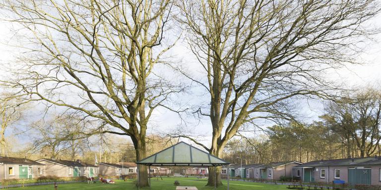De huisjes van recreatiecentrum Van Harte waar straks mogelijk vluchtelingen komen wonen. Foto Gerrit Boer