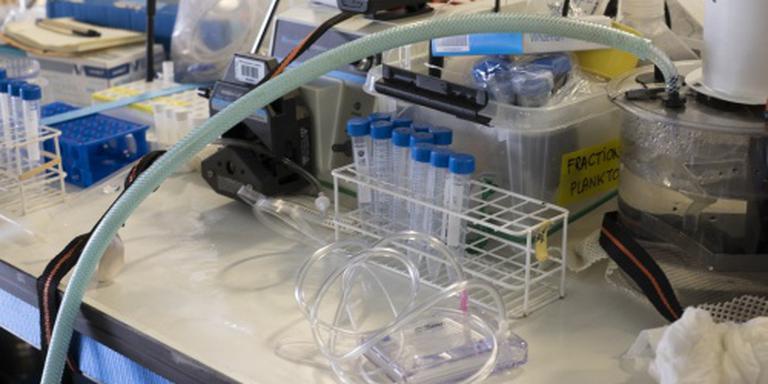 Weer salmonella gevonden in sesamzaad