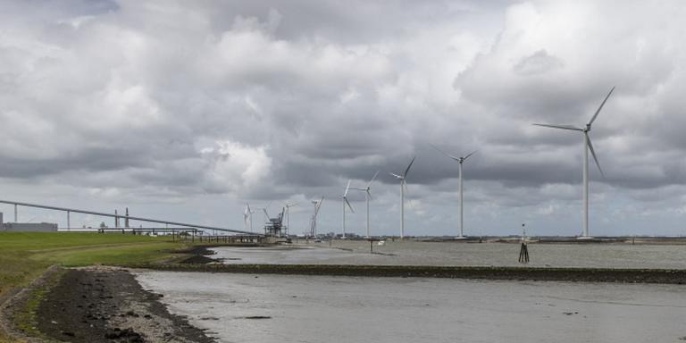 Windpark Delfzijl Noord (Enenco) op Schermdijk ter hoogte van Pier van Oterdum in Delfzijl. FOTO PEPIJN VAN DEN BROEKE