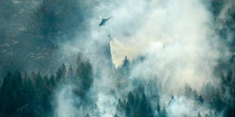 Zweden worstelt met bosbranden