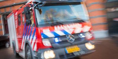 Vee omgekomen bij boerderijbrand in Friesland