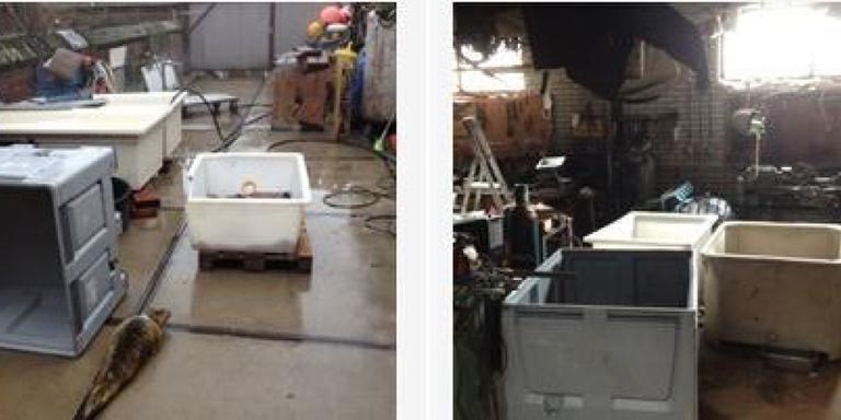 De loods waarin de zeehonden werden opgevangen. Foto's: Nederlandse Voedsel- en Warenautoriteit