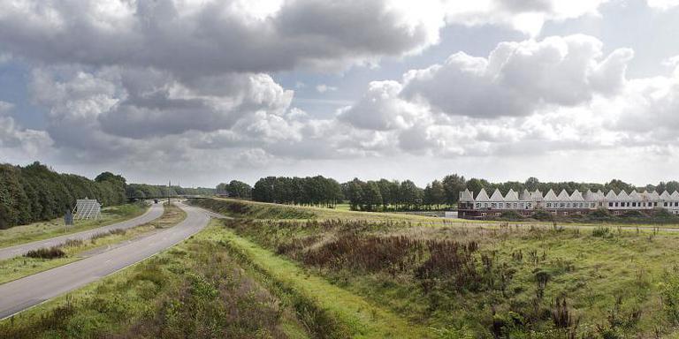 Boompjes illegaal omgezaagd in Emmer wijk Delftlanden