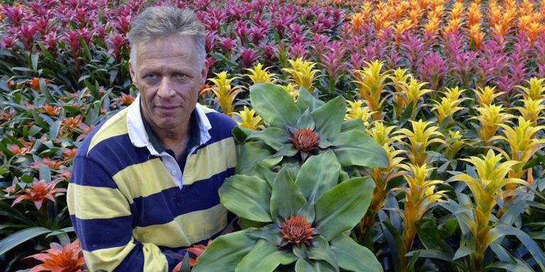 Bromelia kweker John Meeuwisse