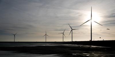 Windmolens in Rotterdam. Foto: ANP