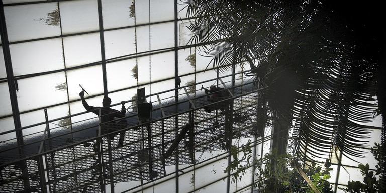 De kas in de Hortus die werd gesloten. Foto: Archief DvhN