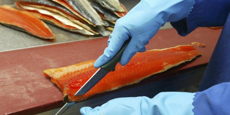Geen andere visboer meer op Brink in Roden