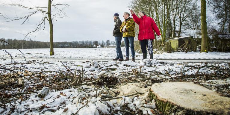 Mariëtte de Jong (met rode jas) vorige maand, vlak nadat de bomen gekapt waren. Foto archief Huisman Media