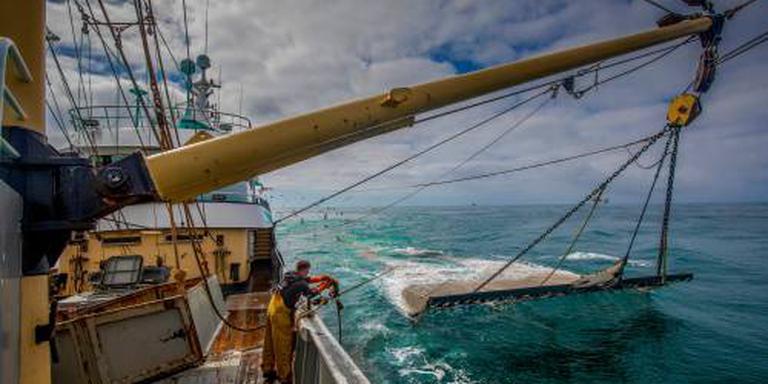 Milieuclubs willen fraudeonderzoek pulsvisserij