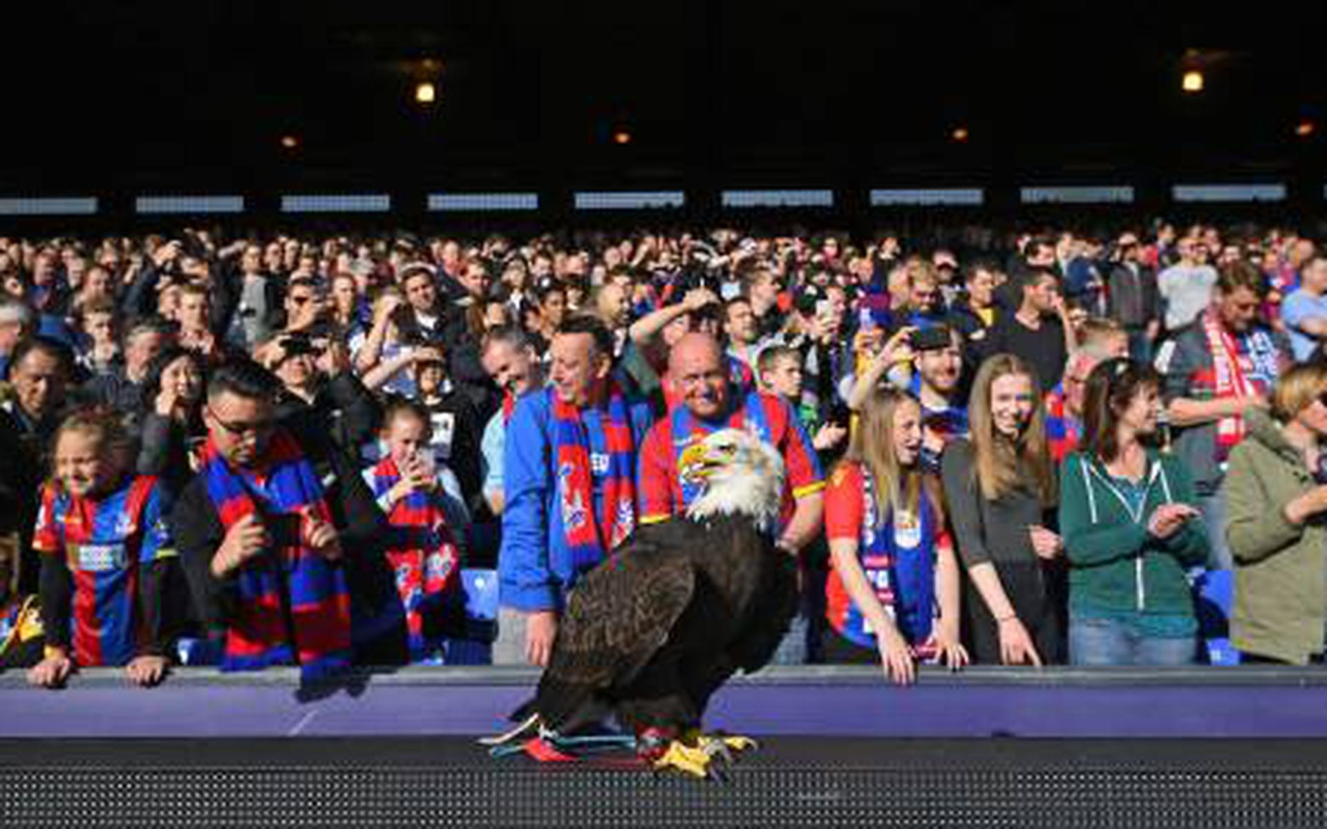 Crystal Palace expands Selhurst Park