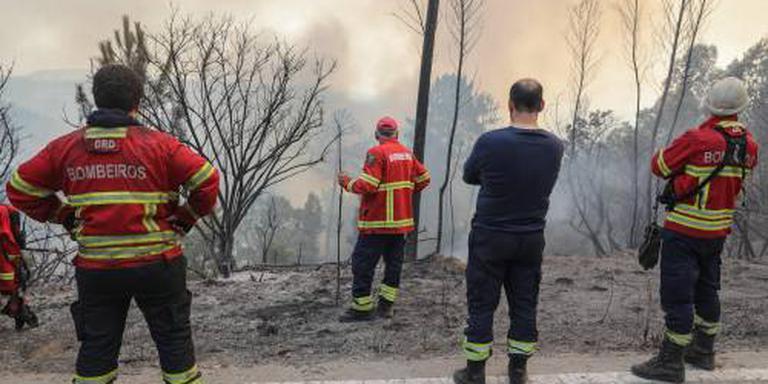 Ongeveer 25 gewonden door brand Algarve