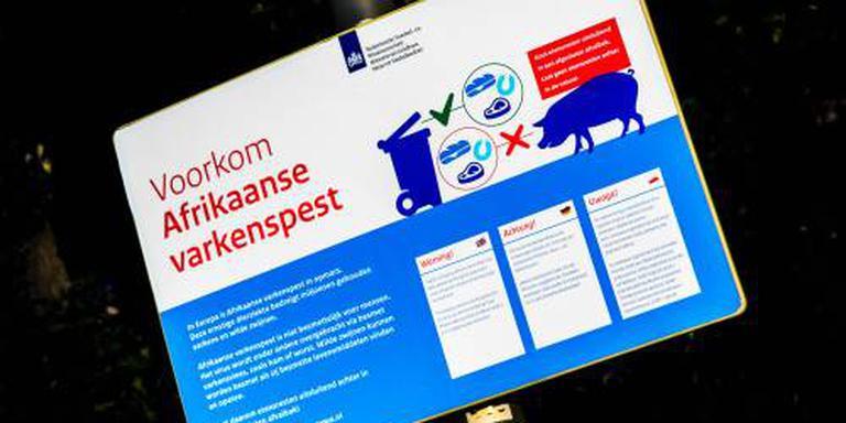 Deel Frans-Belgische grens dicht om varkenspest