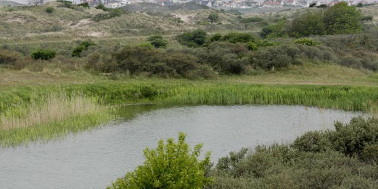 Nederlanders onbekend met waterwingebied