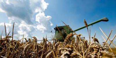 Mogelijk meldpunt voor suïcidale boer