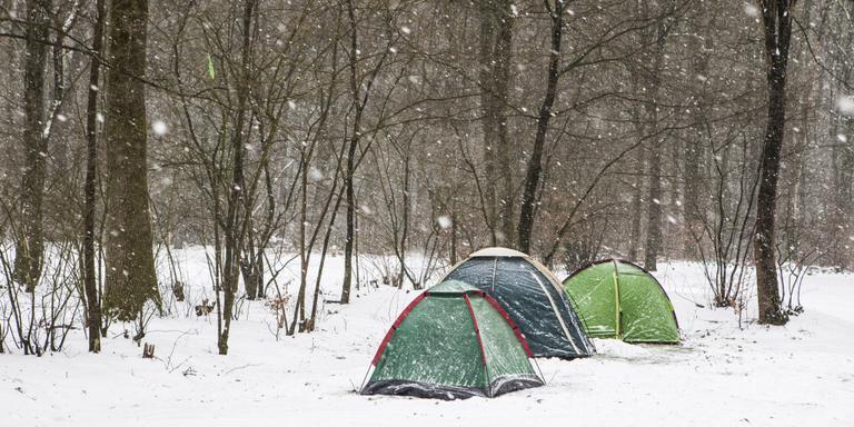 Er is steeds meer animo voor kamperen in de sneeuw. Foto Staatsbosbeheer