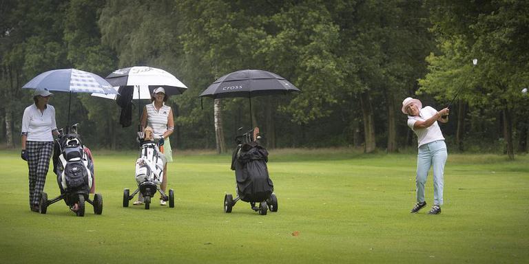 De golfbaan in Vlagtwedde krijgt nestkastjes voor spreeuwen