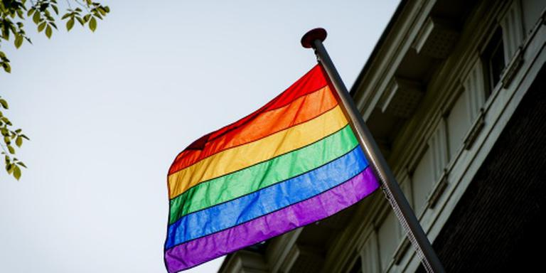 De regenboogvlag. FOTO ARCHIEF DVHN / ANP