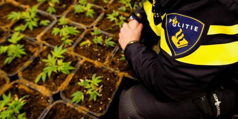 Arrestaties bij actie tegen drugs in Limburg