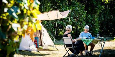 Een goede zomer voor campings. Foto: archief DvhN