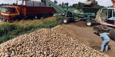 AVEBE verhoogt het voorschot aan de boeren over de geleverde ardappelen. Foto: Archief DvhN