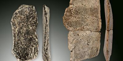 Mijlpaal in onderzoek naar Neanderthalers