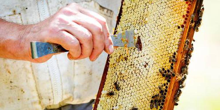 Bijenhouders houden open huis