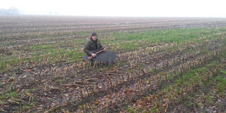 Wild zwijn Dwingelderveld blijkt grap. Foto Jan Hoek