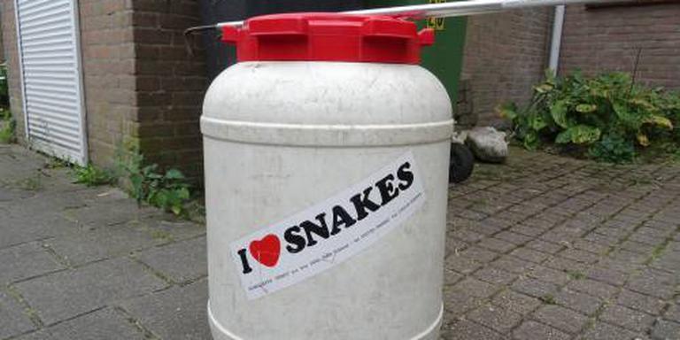 Veel meldingen van 'ontsnapte' slangen