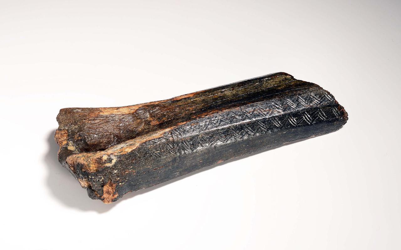 Het oudste kunstvoorwerp van Nederland, een bot van 13.500 jaar oud.