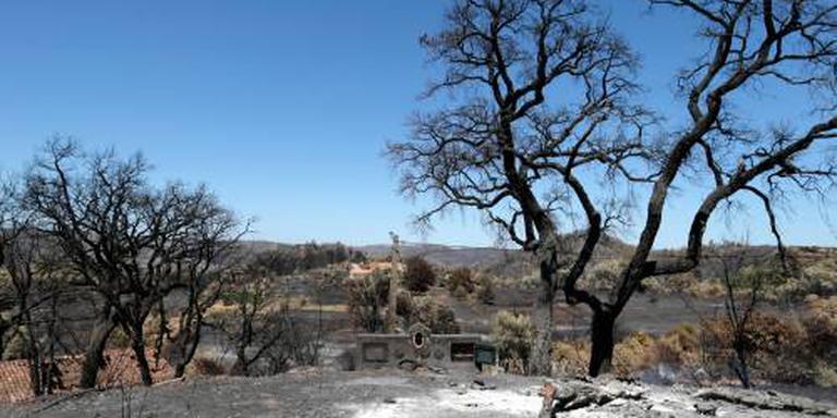 Portugal: brand Algarve onder controle