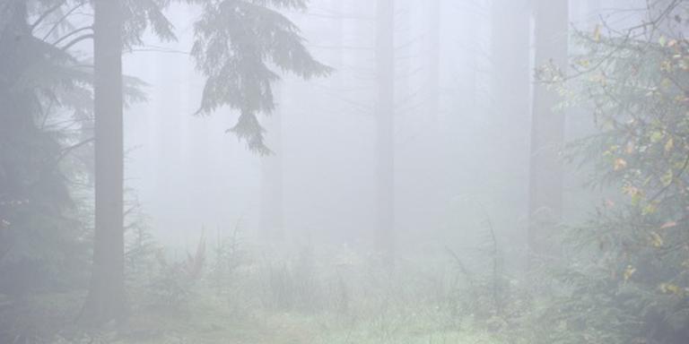 Mist weg: waarschuwing opgeheven