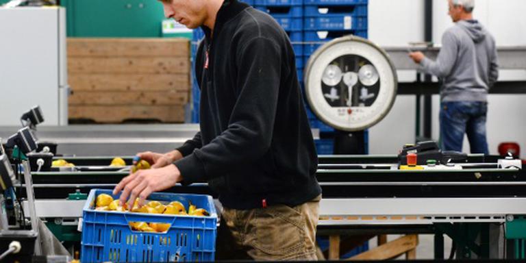 Voedselautoriteit controleert fruittelers