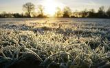 Het vriest amper 5 graden, maar het voelt als de Noordpool. Vijf vragen en antwoorden over de gevoelstemperatuur