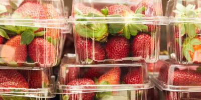 Aardbeiencrisis slaat over naar Nieuw-Zeeland