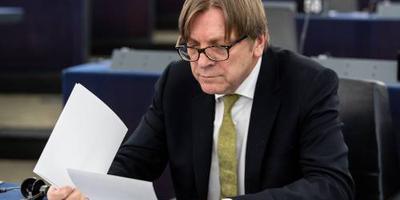 Europese liberalen presenteren 'Team Europe'