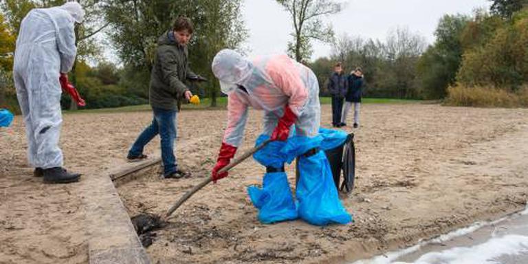 Dode vogels Zeewolde besmet met H5N8
