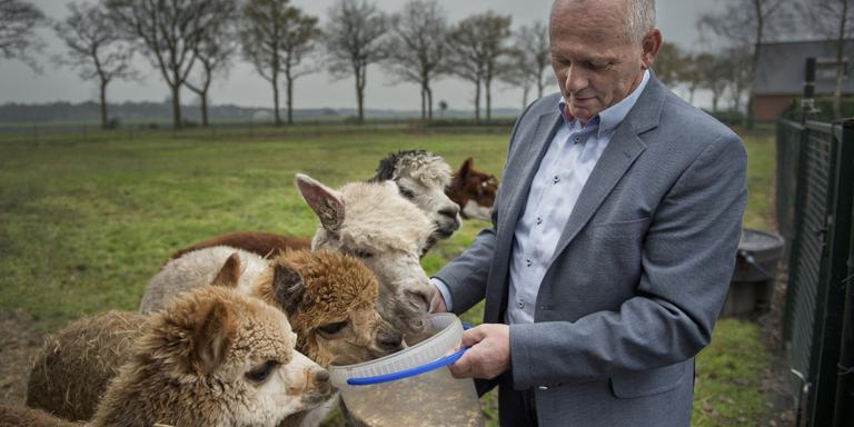 Kiezers overtuigen en koeien melken