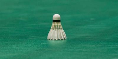Australiër technisch directeur badmintonbond