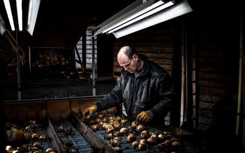 Deze stortvloed aan regelgeving krijgen boeren over zich heen