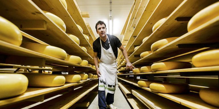Melkveehouder Albert Hilbrands van de biologische kaasboerderij De Drentse Hoeve . Foto: ANP/Remko de Waal