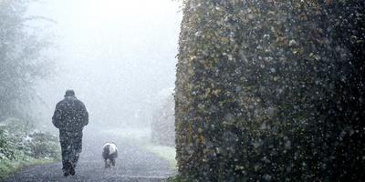 Vandaag is er al kans op natte sneeuw en later in de week zal het 's nachts stevig gaan vriezen. Foto: ANP