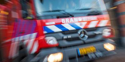 Carnavalswagens Zaltbommel in vlammen op