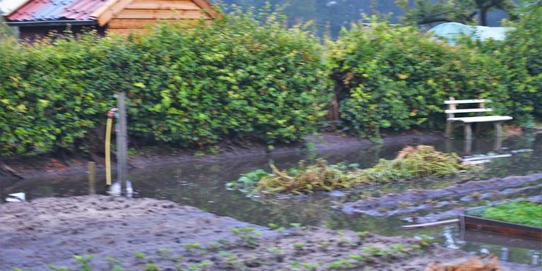 Verschillende schuren en tuinen kwamen blank te staan. Foto: Van Oost Media.
