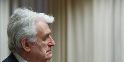 Oordeel tribunaal over hoger beroep Karadzic