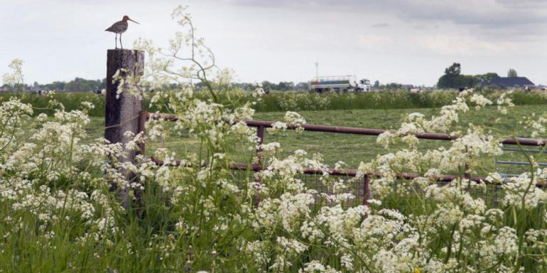 Landbouwers in het gevangenisdorp kunnen door de beschikbaarstelling van rijksgrond weer gaan ruilverkavelen.
