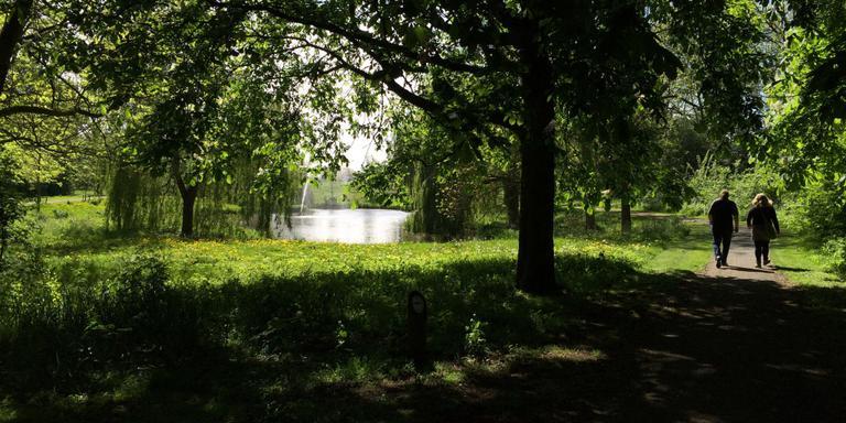 Inschikken op ligweide zwembad Groningen