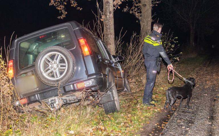 Hond blijft alleen achter in auto na ongeluk: Dit was wel vreemd.